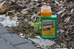 Roundoup